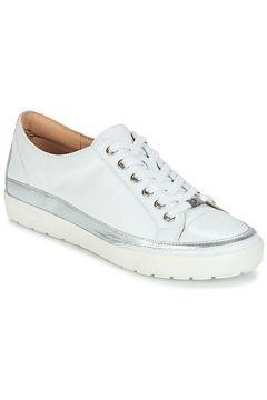 Chaussures Caprice BUSCETI(115470352)