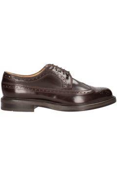 Chaussures Soldini 13208-l-091(115486208)