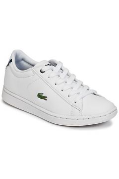 Chaussures enfant Lacoste CARNABY EVO BL 1(127946287)