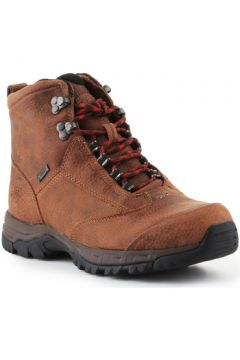 Chaussures Ariat Berwick Lace Gtx Insulated 10016229(115527308)