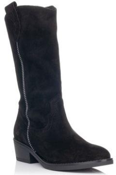 Chaussures Zapp 9041(101700101)
