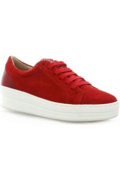 Chaussures So Send Baskets cuir velours(115610713)