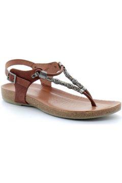 Sandales Porronet fi2533(127975457)