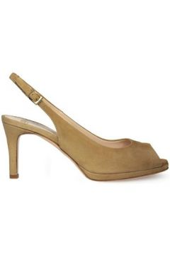 Chaussures escarpins Roberto Festa Milano 7903(115461024)